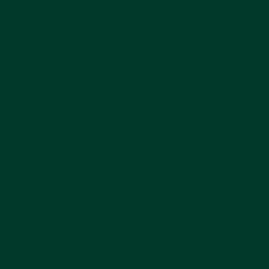 RAL D2 1702010 Trend 1 Dark Green